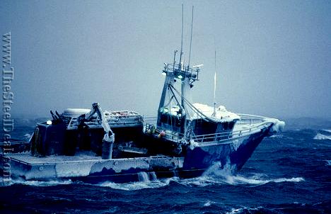 alaska_fishing_commercial_cod_kin_2.png