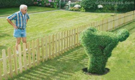 Neighbors_1